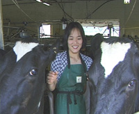Japanese homestay with cows