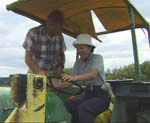 Japanese homestay drives a tractor